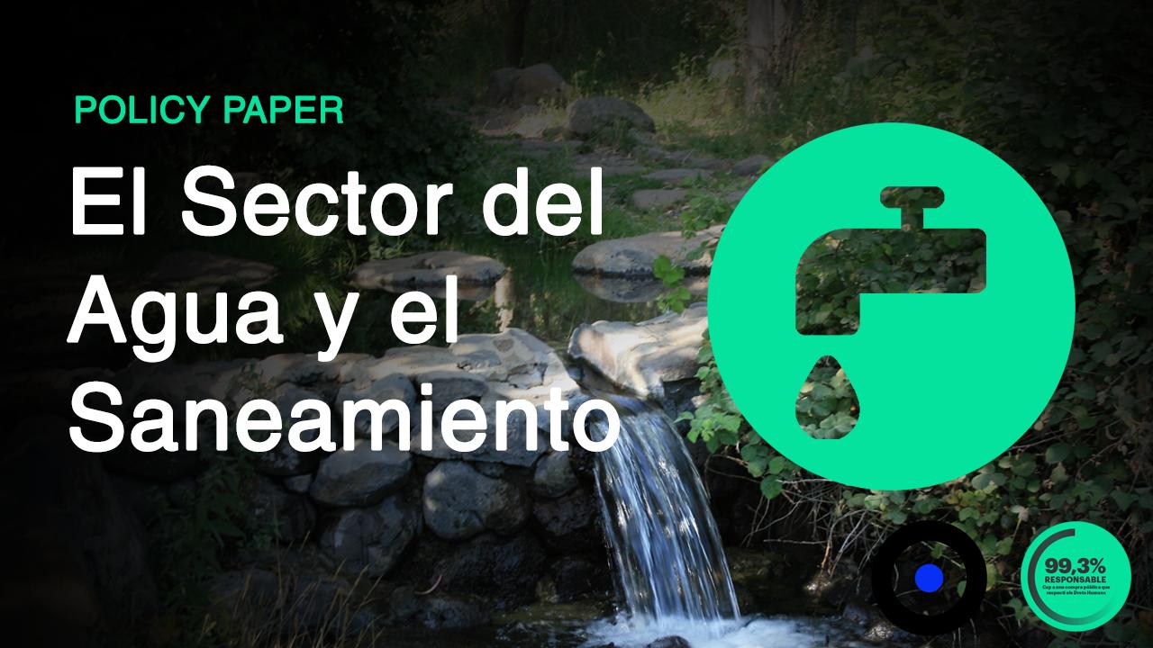 Policy paper | El Sector de l'Aigua i el Sanejament